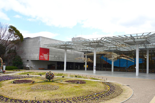 大阪市立自然史博物馆