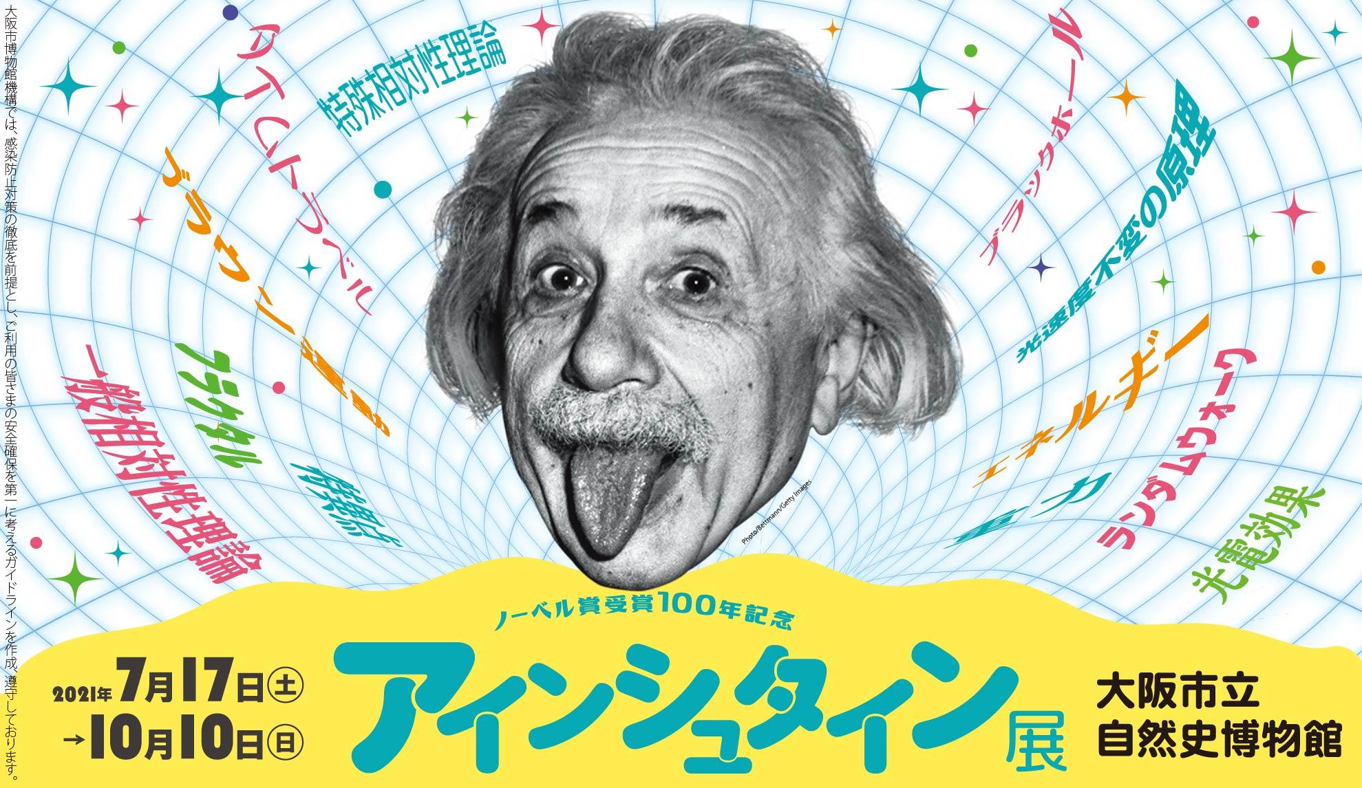アインシュタイン展、大阪市立自然史博物館、自然史博物館