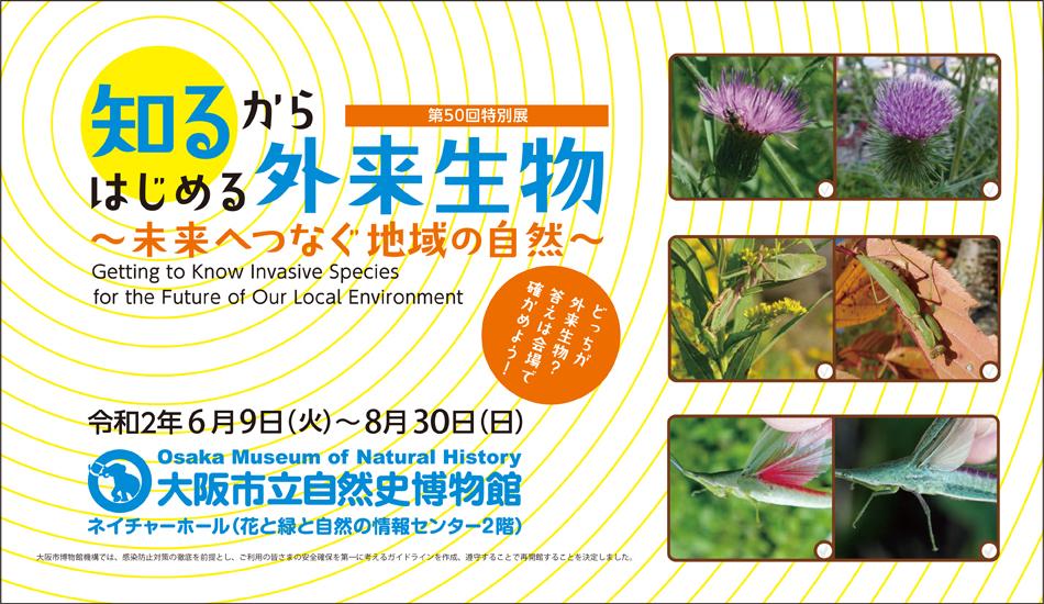 大阪市立自然史博物館,自然史博物館,自然史,長居