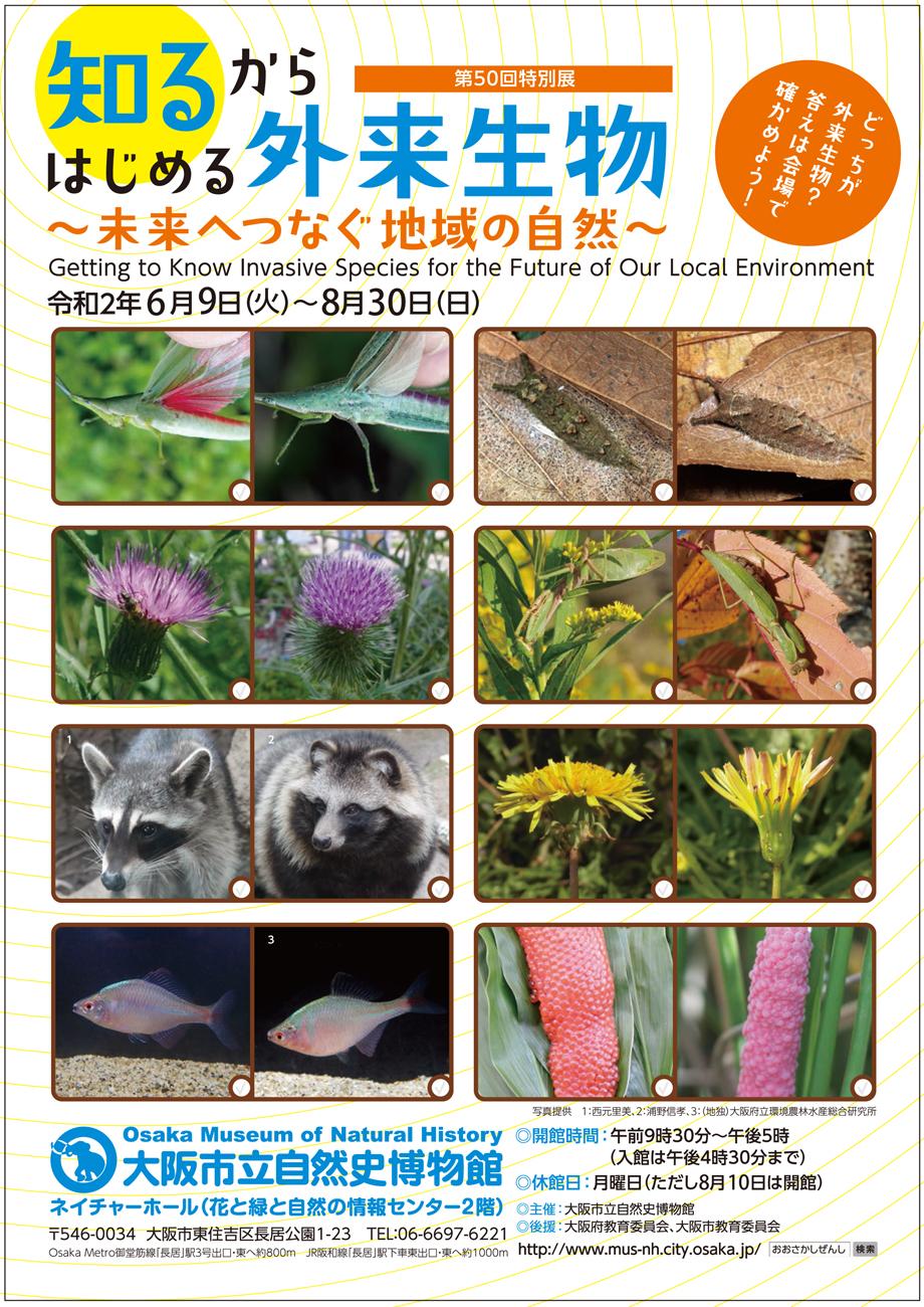 特別展「知るからはじめる外来生物 〜未来へつなぐ地域の自然〜」